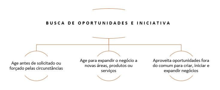 Busca de oportunidades e iniciativa - 2